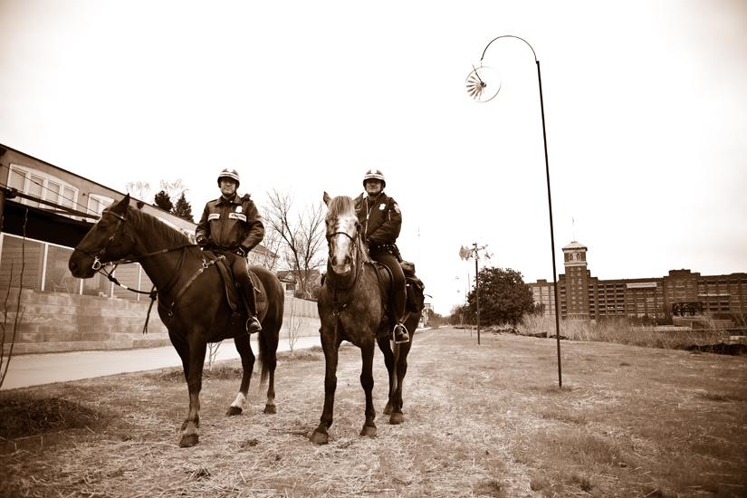 Atlanta BeltLine Horses on East Side Trail